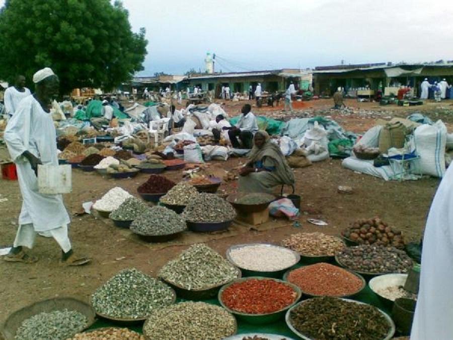 دخول (35) شركة في أسواق محاصيل الصادر بشمال كردفان