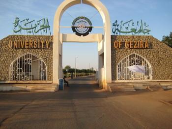 تعليق الدراسة والامتحانات بجامعة الجزيرة