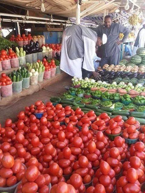تعرف على أسعار الفاكهة والخضروات بالخرطوم اليوم