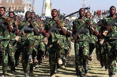 والي شمال دارفور يحيي قوات الدفاع الشعبي
