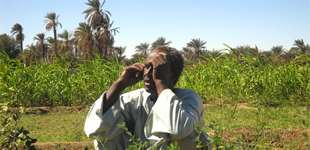 بالفيديو :مزارع بسيط يدخل في غيبوبة بعد إخباره بالربح الذي كسبه في عملية تمويل زراعي