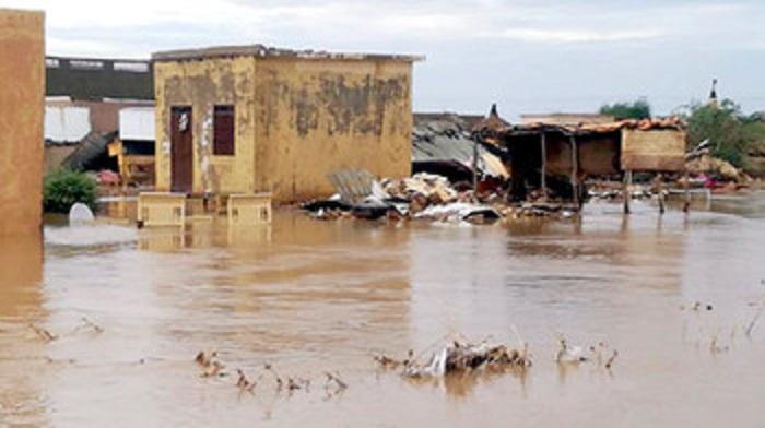 سيول تدمر نحو (1000) منزل في سنار