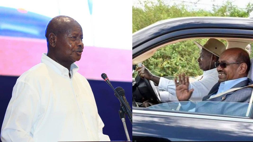 بالفيديو : الرئيس اليوغندي يغرم  البشير (بقرة) بسبب ملابسه