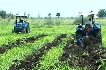 اللجنة القومية للآفات:70%من كلفة الإنتاج الزراعي للمكافحة