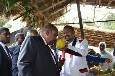 صورة للرئيس البشير مع نظيره الإثيوبي تثير فضول مواقع التواصل