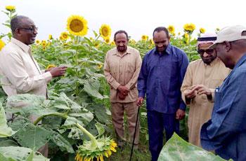 اتفاقية لكهربة مشاريع زراعية بالشمالية بقيمة 165 مليون جنيه