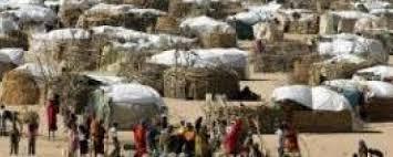 مقتل (7) وإصابة العشرات في مواجهات مسلحة بمعسكر (كلمة)