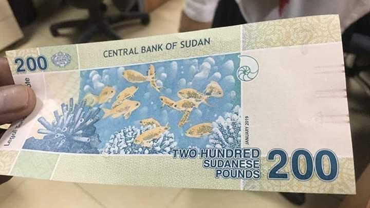 النيابة توجه تهمة لثمانية متهمين في تزييف العملة فئة (200) جنيه