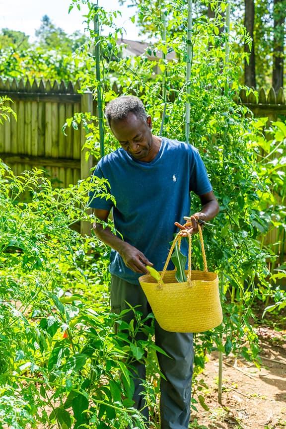 """بالصور: الاعلامي السوداني """"لقمان أحمد"""" يشعل مواقع التواصل بروعة وخيرات مزرعته بمنزله في امريكا"""