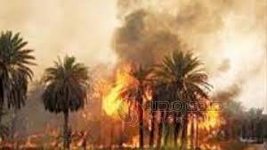 الشرطة تخمد حريقاً بمستودع شركات الغاز بالشجرة