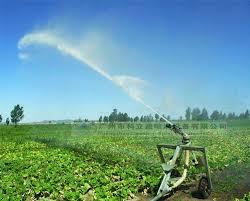 الري: تأمين ري 64 ألف فدان بالسوكي الزراعية
