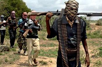 """خبراء: توقيف عناصر """"بوكو حرام"""" تهديد أمني خطير"""
